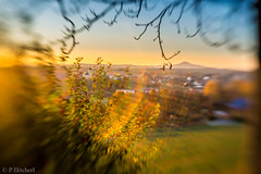 "Am Felix mit dem Lensbaby • <a style=""font-size:0.8em;"" href=""http://www.flickr.com/photos/58574596@N06/22868211175/"" target=""_blank"">View on Flickr</a>"
