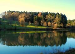 Der Leinecksee (almresi1) Tags: wood lake water see wasser wald spiegelung abendsonne mirroring welzheim alfdorf leinecksee schwbischerwald