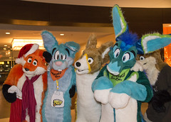 DSC_0157 (Acrufox) Tags: chicago illinois furry midwest december ohare rosemont convention hyatt regency 2014 fursuit furfest fursuiting acrufox mff2014