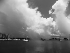 St. Petersburg, Florida (BlueisCoool) Tags: travel sea blackandwhite bw cloud seascape beach nature water beautiful landscape photography coast photo nikon flickr pretty day foto image florida outdoor picture capture cloudporn stormclouds coolpic stpetersburgflorida northyachtbasin sklight pinellascountyflorida l330 northshoreparkflorida