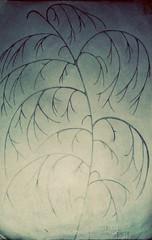 Salice Piangente (fiorenzopassarelli) Tags: draw albero disegno