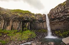 Svartifoss and his beauty (Lorenzo Sedita) Tags: trip panorama waterfall iceland nikon flickr 10 ngc sigma flare 20 cascata skaftafell islanda svartifoss