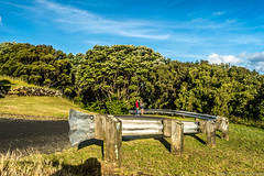 love in nature (samir rafsan) Tags: sky mountain tree love nature clouds landscape image auckland nz astounding