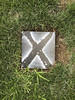 X marks the spot (Wanderer and Wonderer) Tags: grass lawn ground x letter xmarksthespot