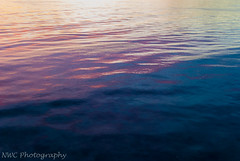 DSC_0574.jpg (NWC Photography) Tags: texture abstract color sunset beach water outdoor sky compo connecticut light painting