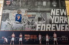 New York Forever NY Knicks Mural (2016) by Tats Cru, Madison Square Garden, New York City (jag9889) Tags: jag9889 basketball manhattan forever 20161113 outdoor 2016 mural text midtown newyorkcity madisonsquaregarden usa newyork tatscru graffiti newyorkknicks ny nyc painting tagging unitedstates unitedstatesofamerica us
