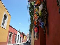 (Ponto e virgula) Tags: mexico sanmigueldeallende ascores floresdepapel