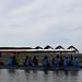 Sumando Esfuerzos en la Conservación de las Tortugas Marinas