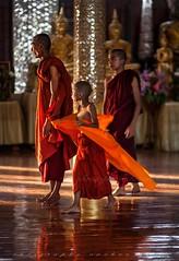 _MG_5270-le-17_04_2016_wat-thail-wattanaram-maesot-thailande-christophe-cochez-cop (christophe cochez) Tags: burmes burma birmanie birman myanmar thailand thailande maesot myawadyy monk bonze novice religion watthailwattanaram travel voyage bouddhisme buddhism portrait