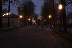2016_1019F-0030 (Andrey.Illarionov) Tags: petersburg            europe russia saintpetersburg peterandpaulfortress evening lights autumn walk sunset people streetphotography