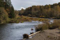 The Molalla River (Joshua Johnston Photography) Tags: canbyoregon molallariver mthood oregon pacificnorthwest pnw autumn fall joshuajohnston canon6d canonef70200f4lisusm