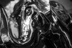 DSC_0705 (Ray Snell) Tags: sheffield meadowhall elephants herd elephant