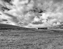 Fence and Clouds (dshoning) Tags: fence country rural shed washington palouse
