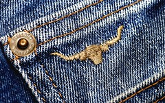 Cow stitch [ in explore ] (flowrwolf) Tags: macromondays macromonday stitch hmm macro makro fabric denim denimcoinpocket jeans denimjeans flowrwolf blue bluefabric embroidery embroiderythread indoor stitching inside indoors rivet thread fadeddenim trustyjeans rmjeans rmwilliamsbrand rmlogo stitchedon stitchesareessential stitchesholdthingstogether