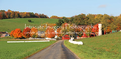 Amish Barn and Fall Color  5826 (intricate_imagery-Jack F Schultz) Tags: jackschultzphotography intricateimageryphotography amishcountry ohioamish southeasternohio fallcolor amishfarm