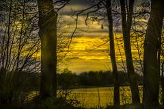 """ Sunset Dreiländersee "" (Kalbonsai) Tags: sunset dreiländersee clouds color nikon d5100 1685mm trees waterscape outdoorphotography naturshot scape"