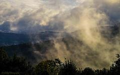 mystic (Fay2603) Tags: nature outdoor wolken clouds wolke himmel sky landschaft berg abhang mystisch mystic light licht nebbia nebel fog trees bume alberi buio dunkel dark landscape schwbische alb xt1 fuji