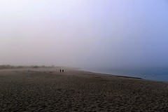 in the vast space of my mind (*F~) Tags: caminha portugal river ocean beach sand people humans walking space vastness mind cloud silhouettes minimal horizonte