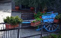 Toirano (04) (Pier Romano) Tags: toirano savona liguria entroterra riviera ligure fioriere carretto borgo antico paese old town