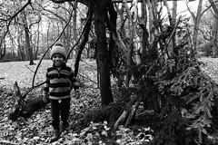 Wood elf (Mr Richie) Tags: panasonic lumix lx5 digital dadsgroup fathers nature streatham common lodge monochrome blackandwhite bw filmgrain