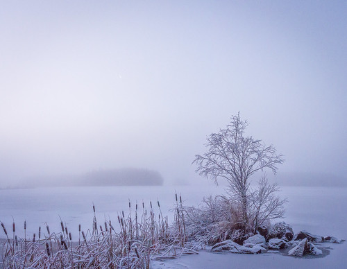 Misty winter morning on Haapajärvi's reservoir