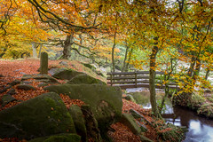 Colourfest (Ian Emerson) Tags: peakdistrict derbyshire bridge rocks moss autumn autumnal hiking october trees colourful leaves landscape forest beauty serene river water canon omot raw