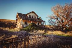 Mourning Glory (Pedalhead'71) Tags: dusty washington abandoned house