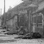 Hue 1968 - Dead U.S. Marines in the Battle for Hue thumbnail