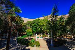 Chile 2013-3428 (sebtac) Tags: chile2013 chile2013outdoor pisco valley chile 2013 outdoor piscovalley