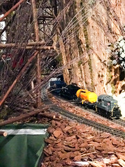 HTS-24 (Peter Parides) Tags: unitedstates christmas trains newyorkbotanicalgardens new york city newyork