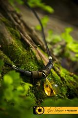 Collar (noevargasfotografo) Tags: producto comercial bisutería artesanía ámbar