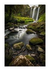 Whangarei Falls - Northland (dominicscottphotography.com) Tags: dominicscott sony a7rmii sel1635z ilce7rm2 whangarei waterfall newzealand northland leefilters longexposure explore