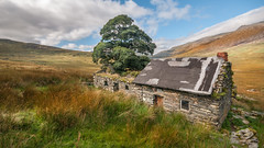 House on the prairie (Einir Wyn) Tags: landscape mountains snowdonianationalpark nant cymru wales love light tree cottage house derelict uk britain outdoor sky nikon sigma autumn land nature natural northwales snowdon home beauty