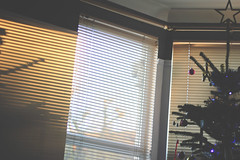 Golden hour Christmas tree (Benn Gunn Baker) Tags: benn gunn baker canon 550d t2i bristol golden hour christmas tree light sun shadows shutters blinds
