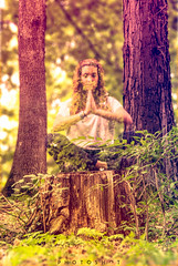 The spirit of the woods (photoshot1993) Tags: art ex forest photoshop dc colours bokeh sony sigma photomontage 17 28 alpha 50 foret couleur 65 coulour hsm blanquefort magelan
