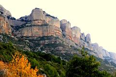 La Morera de Montsant (Marlis1) Tags: picnic priorat morerademontsant marlis1 panasonicfz1000 explorednov22015