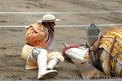 Tumbo del picador Santiago Reyes 'Yaco II' en Acho (Vladimir Tern A.) Tags: peru caballos gente lima bulls toros costumbres acho bullfighting bullfighters tauromaquia tradiciones toreros matadores corridasdetoros taurinos plazasdetoros feriataurina culturayarte