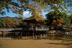NARA (gasdust) Tags: sony nara 奈良 奈良公園 浮見堂 a99 sal135f18za slta99v