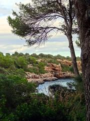 Cala Sa Nau, Mallorca, Spanien (Anne O.) Tags: 2015 balearischeinseln migjorn spanien calasanau panoramio6954847125642617