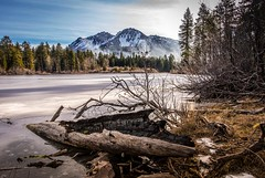 #B008  Log and Chaos Crags-1 (mikebrubin) Tags: park winter lake frozen log chaos national crags lassen manzanita