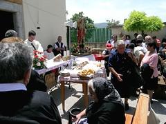 """Ricigliano (SA), 2007, La """"turniata"""" di San Vito. (Fiore S. Barbato) Tags: italy campania festa salerno vito pecore sanvito gregge ricigliano turniata tanagro"""