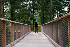 The man on the bridge II (Alicia FB) Tags: saarland allemagne sarre man boy wood bois pont bridge wild automn automne forest fort