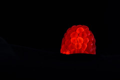 Raspberry de-light (Pog's pix) Tags: raspberry lit uplit fruit edible red black detail closeup dark light macro stewarton tabletop messingabout torch setup redonblack creative blackbackground tasty segments illuminated torchlight darkness glowing