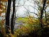 Autumnal - DSCF4345 (Pedrina_mn) Tags: ilovenature