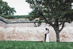 7N1B8951 (Lkonyukhova) Tags: weddingart weddingday photo backround nature tree