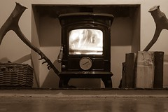 (41/52/2016) 'The Warmth of Sepia' (popEstatesPhotography) Tags: sepia wood burner stove aga fireplace hearth antler week412016 52weeksthe2016edition weekstartingfridayoctober72016
