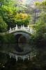 Chinese Garden (Christoph Kampf) Tags: chinese garden chinesegarden bamboo bambus bridge brücke nebel sunlight green nature statue nikon d700 80200 nikond700
