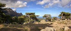 Les aiguilles de Bavella - Corse (Xtian du Gard) Tags: bavella corse gr20 montagne mountains landscape france awardtree canonflickraward concordians beautifulphoto