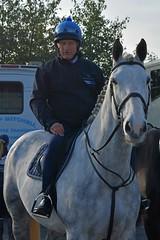 Bob Champion (napoleon666uk) Tags: liverpool international horse festival liverpoolinternationalhorsefestival horseshow echoarena animal parade bobchampion