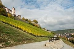 Wrzburg - Marienberg Fort (Ben Garssen) Tags: duitsland germany wurgburg stad city cities nature fort fortress wine fields wijn velden veld kleur blauw nikon sigma d5200